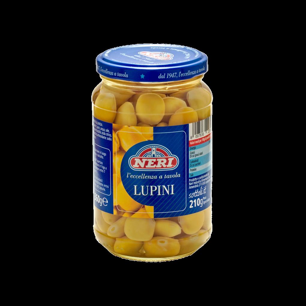 Lupini